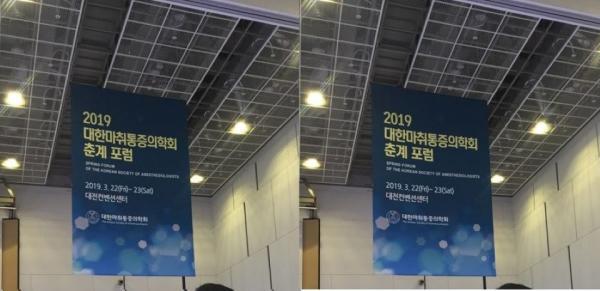2019 대한마취통증의학회 춘계포럼